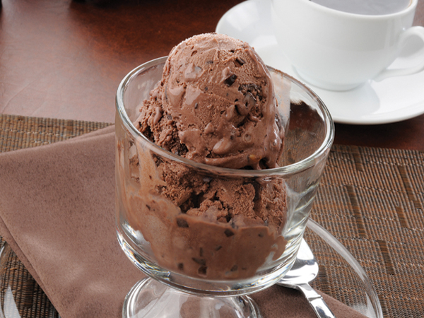 A glass bowl of chocolate ice cream with chocolate chips